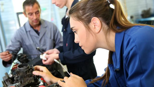 Qual é o perfil de estudantes que fazem cursos de engenharia?